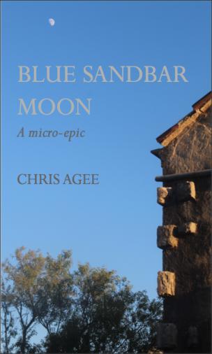 Blue Sandbar Moon Dust-jacket